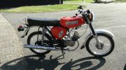 Moped S 50