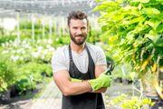 Gartengestaltung Gartenarbeiten Gartenpflege Heckenschnitt