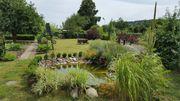 Wunderschöner Garten in Quedlinburg abzugeben