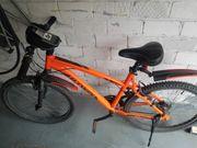 2 Fähräder oder auch einzeln