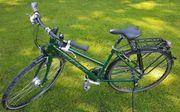Stevens Fahrrad Damen City-Bike