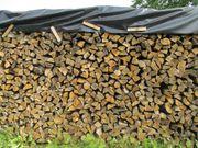 Brennholz - Kastanie
