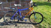 Focus Black Rider 48cm