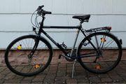 Schauff Herren-Trekking Bike Sacramento 28