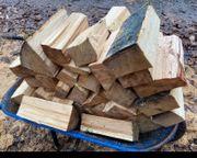 Buchen Brennholz 45cm Scheite frisch