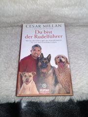 Hunde Buch