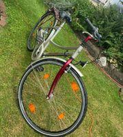 Damen-Fahrrad 26 Zoll