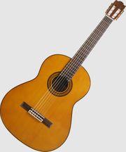 Gitarrenunterricht Songbegleitung und Theorie in