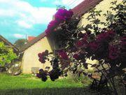 Auszeit Schwäbische Alb Bauernhof