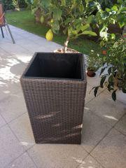 Polyrattan Pflanzkübel für den Innenbereich