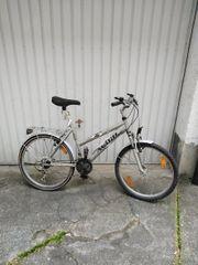 Fahrrad AVIGO