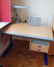 MOLL Schreibtisch buche blau mit