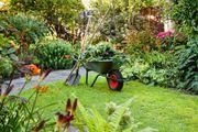 Biete Garten-Arbeit und sonstige Arbeiten