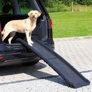 Einsteighilfe Hund