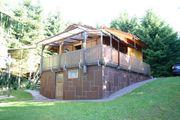 Waldgrungstück mit Hütte in Elsass