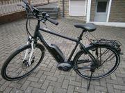 E-Bike Pegasus Solero E8 wie