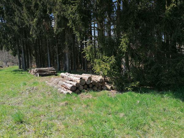 Waldgrundstück ca 4 ha mit