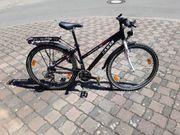 Damen Fahrrad Lakes