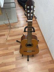 Gitarre 3 4 neue Saiten