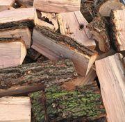 Brennholz FRISCH zum einlagern