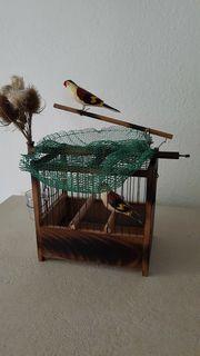 Vogelfalle Kombi Bird Trap Lebendfalle
