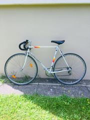 Peugeot Rennrad