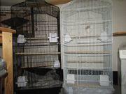 XL Vogelvoliere Vögel Käfig für
