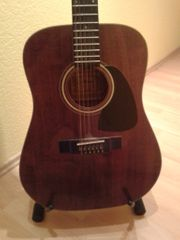 12saitige Akustik Gitarre Ariana D15WA-12