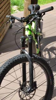 E-Bike Spezialized Turbo Levo wie