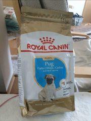 Royal canin pug puppy Welpenfutter