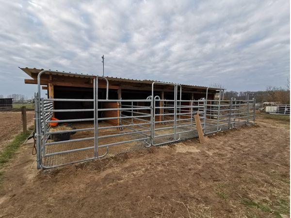 Einstellplatz für Ponys Pferde