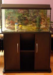 Aquarium 96 l mit Unterschrank