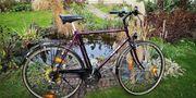 Fahrrad Herrenfahrrad KTM 28 Zoll