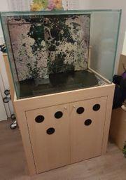 Beckenauflösung Meerwasser 240 Liter Aquarium
