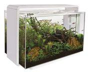 Superfish Home 60L Aquarium FASTNEU