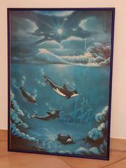 Bild Unterwasserwelt Wandbild Alu-Rahmen