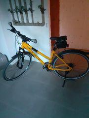 Damen Fahrrad Marke Wildfang
