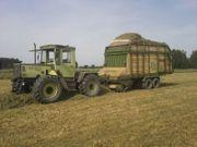 Landwirtschaftlicher Mitarbeiter