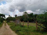 Brasilien 100 Ha Grundstück in
