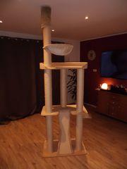 Kratzbaum außergewöhnliches Design 12 cm