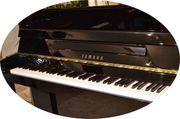 Yamaha Klavier Modell P114 in