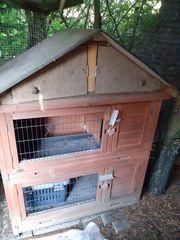 Neuwertiger Hasenstall Kaninchenstall mit 2