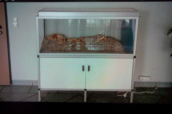 Aquariumunterschrank für L 120 x