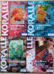 Koralle Meeresaquaristik Hefte