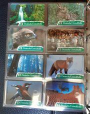 Telefonkarten Deutsche Umwelthilfe - NEU ungebraucht