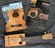 Ukulele Zigarrenkisten Gitarre 4-saitig und