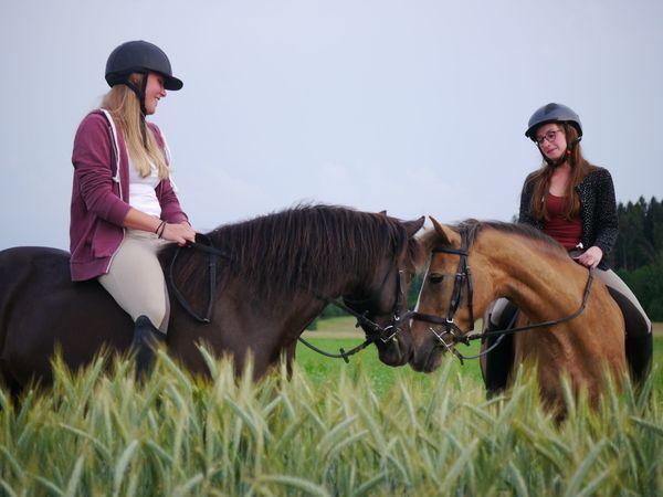 Reiterferien für Mädchen Termine 2021