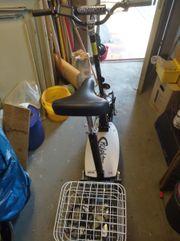 Elektro-Roller Rolektro eco-fun 20-2