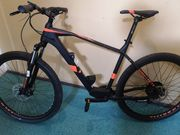 E-Bike Raymon HardRay E-Nine 2
