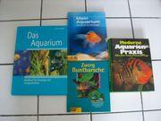 Aquarium für Einsteieger Fortgeschrittene Fische